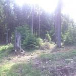 Taunussteinrunde